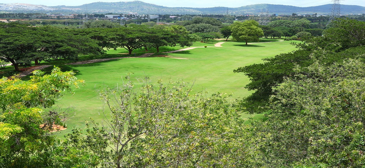 15th Hole Fairway